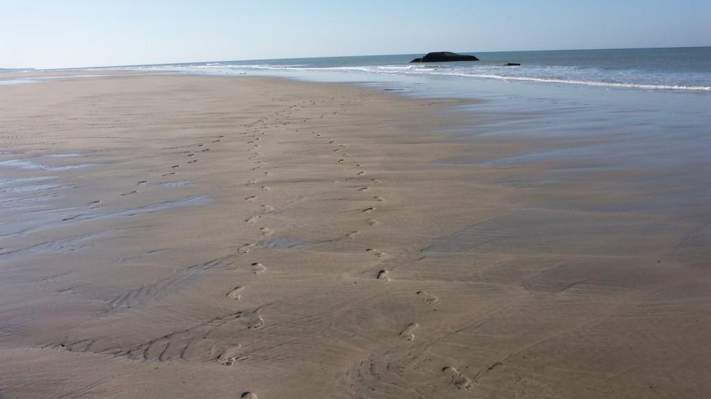 Fußspuren am Meer - Landschaft zum Träumen; Foto: Fred Häusler