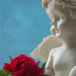 Engel mit Rose 2; Foto: Fred Häusler